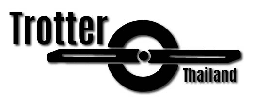 Trotter (MAGWHEEL) Electric Street-Snowboard